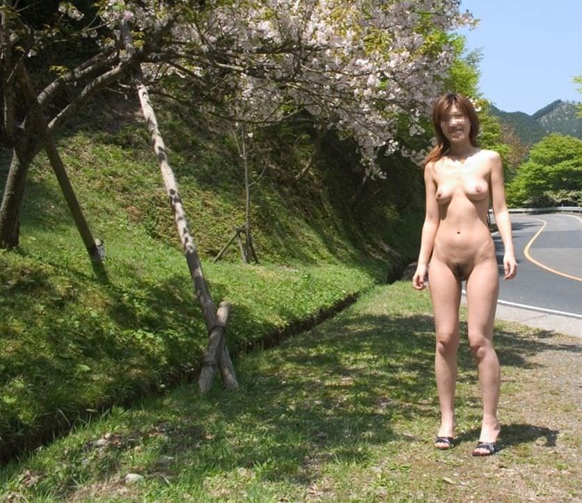 桜と写った露出画像6